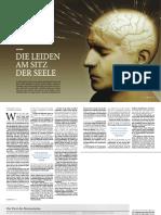 psyche-und-gehirn.pdf