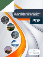 Raport IMM - 2013