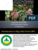 BIF Fruit Plantation 2015