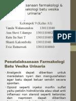 PP Batu Vesika Urinaria (Dr. Herlina)