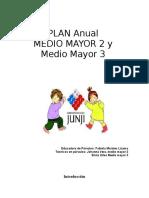 Plan Anual 2010 m Mayor 2-3 (7)