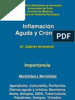 Inflamación Aguda, Crónica y Granulomatosa