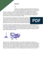 Article   Que Es Hipoacusia