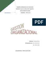Gestion Organizacional