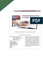 Patologia_Digestiva_Porcina.pdf
