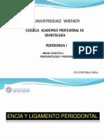encia_y_ligamento_periodontal__208__0.pdf