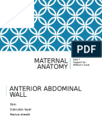 Maternal Anatomy Williams