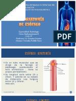 Radioaatomía de Esófago
