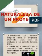 Naturaleza de Un Proyecto