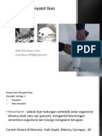 GRANDIOSA, 2012.pdf