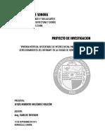 Proy. Inv. Roberto Melendez