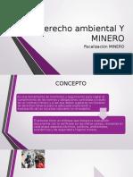 fiscalizacion-minera (1)