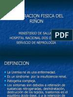 3.EXPLORACION FISICA DEL RIÑON