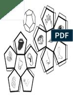 Dodecaedro - Cuerpo Humano