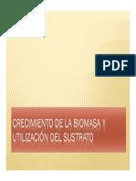 Biomasa y Sustrato