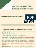 Gestión de Micro y Pequeña Empresa 2015