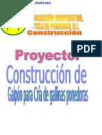 Proyecto Construccion de Galpon Para Gallinas Ponedoras Ok