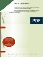 Fracturas en Carbonatos (1)