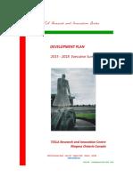 development plan executive overview tesla ric
