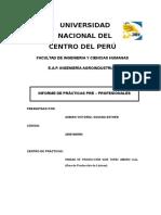 Informe Practicas Pre-profesionales