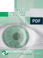 Terminología y lineamientos para el Glaucoma