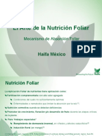 Nutricion Foliar Presentation