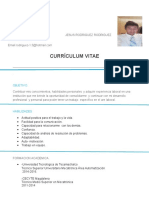 Currículum Vitae Ing Mauro