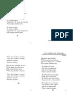 5 - Joao Pereira - Seis de Janeiro - Pares