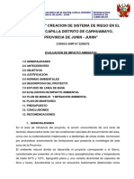 Estudio de Impacto Ambiental en Canal de riego en el Sector Capilla, Distrito de Carhuamayo