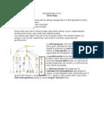 Clase 9, Fisiopatologia 20-12