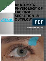 Lacrimalis UMS