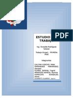 ESTUDIOS DEL-TRABAJO