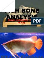 3b. Fish Bone Analysis