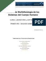 morfofisiologiasch