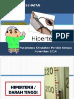 Penyuluhan Hipertensi Pkk Pdk Kelapa