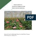 Garbera Flower Project Report Sample