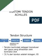 Anatomi Tendon Achilles