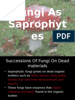 1.Fungi as Saprophytes