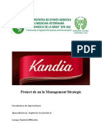 262044378-Proiect-Kandia-Dulce.doc