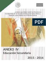 Anexo 4 Secundaria