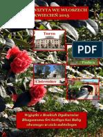 VIAJES DE SAI BABA POR EL MUNDO 2015 04 Italy Polish