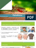 Paludismo (parásitos infectante)