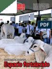 PECUARIA Y NEGOCIOS - AÑO 12 - NUMERO 139 - FEBRERO 2016 - PARAGUAY - PORTALGUARANI