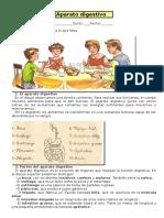 Aparato digestivo-Ficha.docx