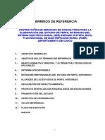 Terminos de Ref-perfil_integrado Sist Electri Rural