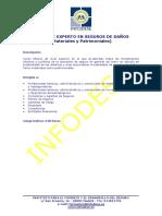 EXPERTO en SEGUROS de DAÑOS Materiales y Patrimoniales. Programa y Características