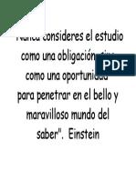 Msje Einstein
