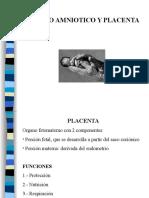 6.- Placenta.ppt