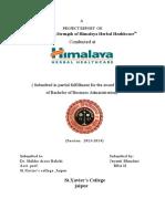 Project Report Heimalya Herbal