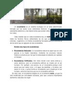 Impacto Ambiental en la Construcción